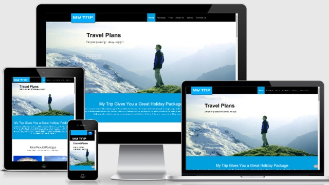Tour and activity software, tour business, marketing strategies
