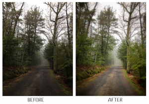 snapseed before after