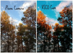 vsco before after