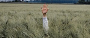 person-with-one-hand-up-on-a-field