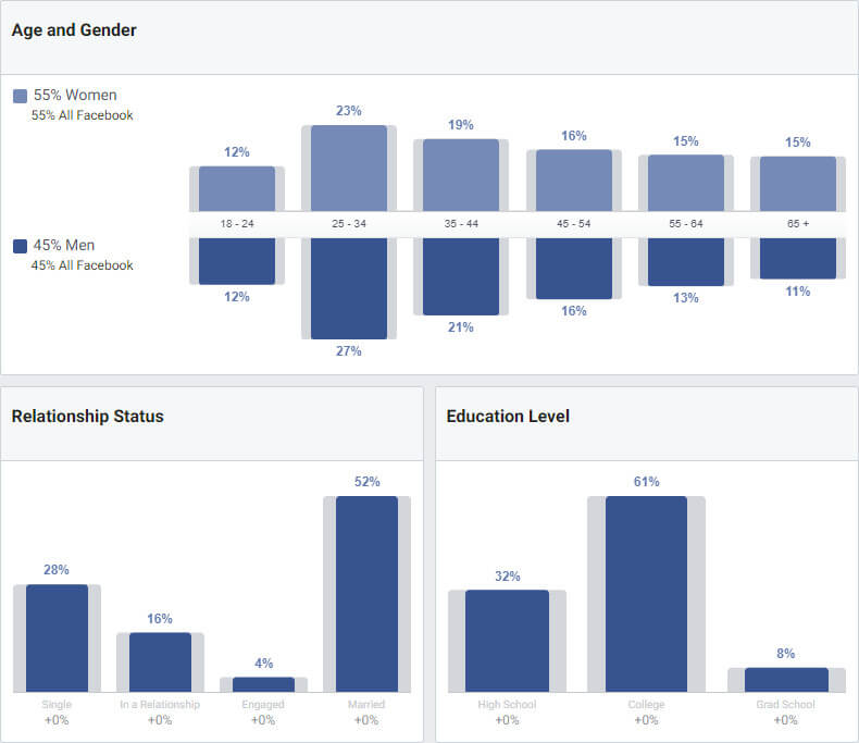Facebook audience insights screen.