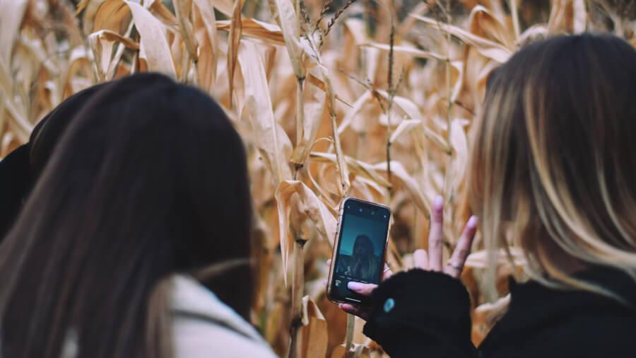 Teenage girls taking selfie on a corn plantation during agro tourism tour