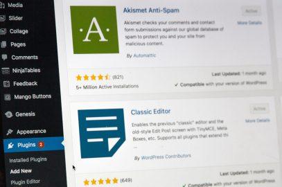 Photo of wordpress plugins section